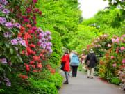 VanDusen Botanical Garden-94