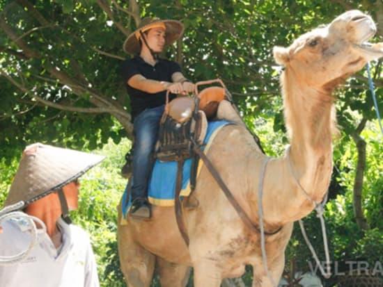 camel_safari_ritz-1007
