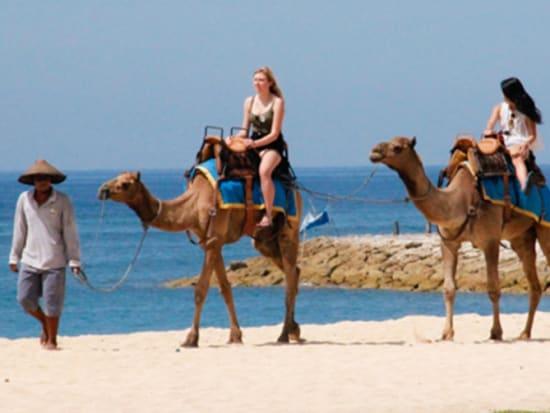 camel_safari_ritz-1006