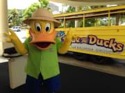 Chucky_Duck1