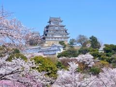 151231_himejicastle_spring