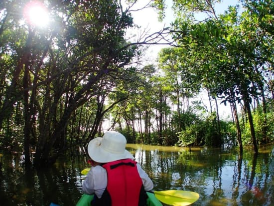 熱帯ジャングルカヤック体験 アンダゴ06