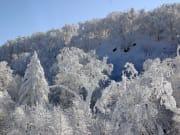 スノーシュー樹氷_0150