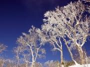 スノーシュー樹氷IMG_0426