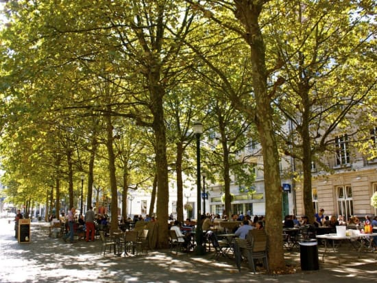 18.-royal-park.-brussels.-belgium.-to-see.-where-to-walk.-what-to-see-in-brussels.-worth-seeing.-what-to-visit.-share-opinion.-t