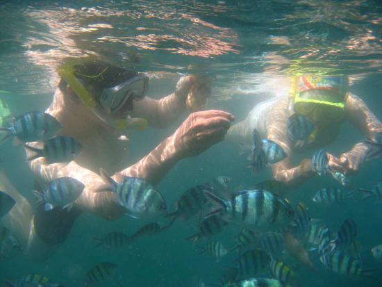 snorkeling-1