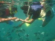 snorkeling-2