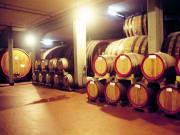 chianti, winery
