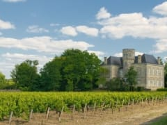 Chateau and vineyard in Margaux