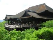 清水寺 夏