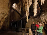 Waitomo Glowworm Caves Guided Tour