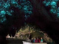Glowworm_cave_2