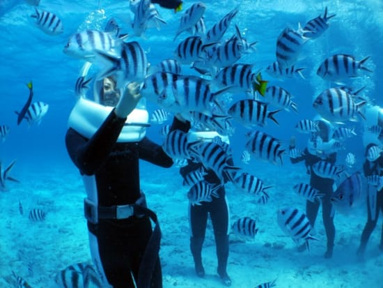 snorkeling and marine walking combo tour with blue cave visit from