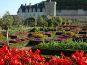 Loire Castles Tour from Paris