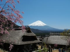 Mt. Fuji seen from Iyashi no Sato