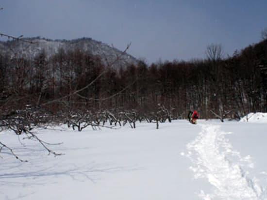 八剣山スノーシュー (3)