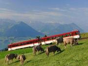 Mt Rigi, Rigi Kulm, swiss alps, cogwheel train