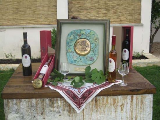 gulliver_konavle_wine_tour_(21)_34441.jpg.axd