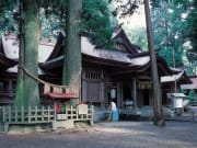 A449高千穂神社 提供みやざき観光コンベンション協会