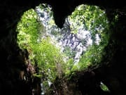 AND縄文杉