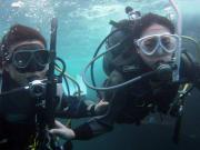 Fish Island Crew