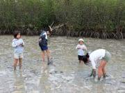 mangrovewalk_6