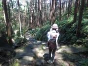 熊野古道伊勢路・馬越峠エコツアー8