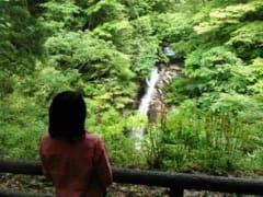 智頭町森林セラピー推進協議会28