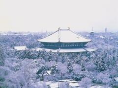 東大寺(大仏殿)