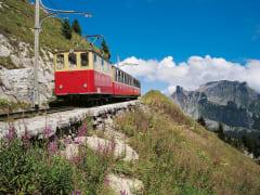 SP_035_Bahn
