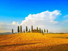 Tuscany, Day Tour from Rome
