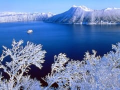定期観光 摩周湖