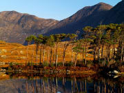 Connemara from Galway Full Day Tour