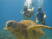 Hawaii_Maui_Excellence Charters_Aqua Adventure