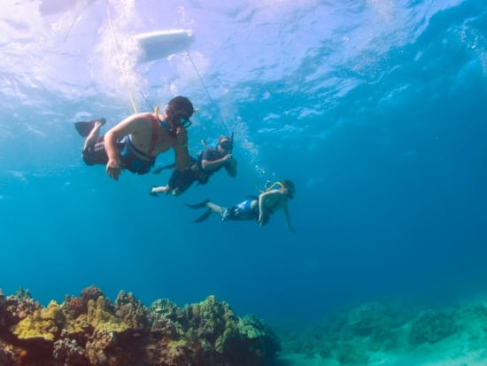 Hawaii_Maui_Excellence Charters_Snuba Diving