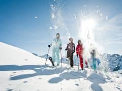 Swiss Alps, Jungfrau, Bernese Oberland, Skiing