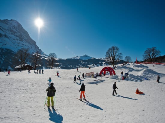 Ski Tour in the Swiss Alps from Lucerne, Lucerne tours & activities ...