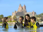 Dolphin Encounter1