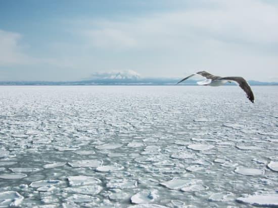 オホーツクの流氷と知床半島