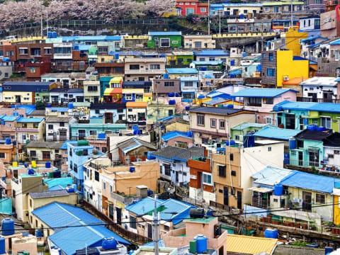 目的地別 釜山観光ツアー