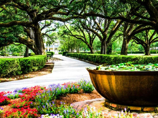 New Orleans Historic Garden District & Cemetery Guided Walking Tour ...