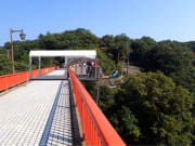 bungy jumping in Nara