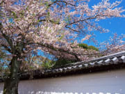 醍醐寺霊宝館