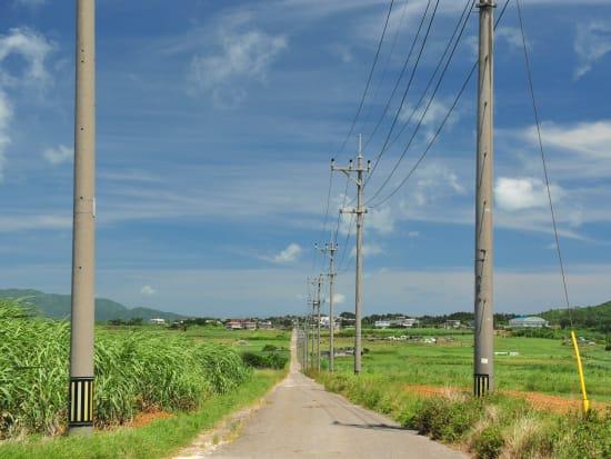 小浜シュガーロード (1)