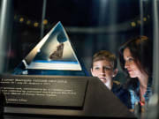 USA_Orlando_Gator Tours_Moon Rock