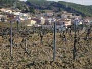 WineDO-4-600x400