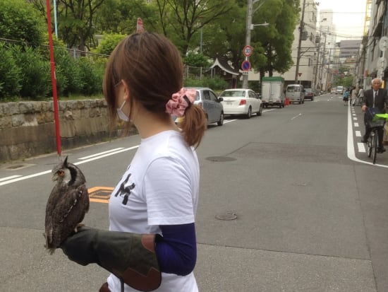 お散歩企画(公園・ショートコース)_7440