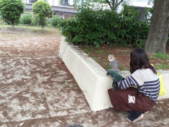 お散歩企画(まっすぐ公園ルート)_165