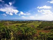 Hawaii_Oahu_Gunstock Ranch