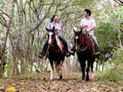 Hawaii_Oahu_Gunstock Ranch_Sweetheart Ride